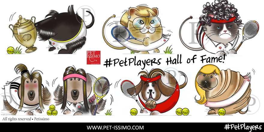 PET PLAYERS